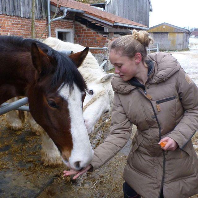 Ich hoffe du bist bald meinz!#horse #pferd #whisky #whiskey #withcolors #my #dream #love #159 #kleines #bayrischeswarmblut # #